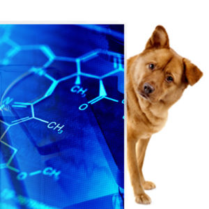 Biohemija u veterini