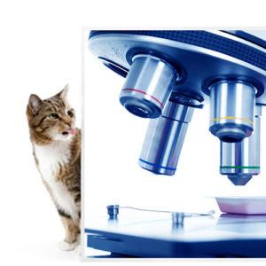 Laboratorijska oprema za upotrebu u veterini