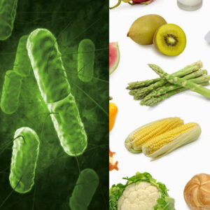 Molekularna dijagnostika patogena u namirnicama